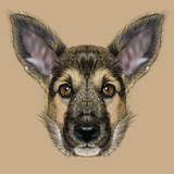 Illustrative Portrait of Shepherd Dog Cute Puppy with Traditional Colour of Coat