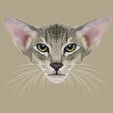 Illustrative Portrait of Oriental Cat Very Beautiful Domestic Cat Tabby Coat Print with Green
