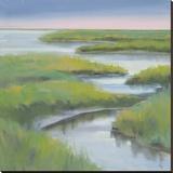 Winding Everglade
