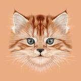 Illustrative Portrait of Domestic Kitten Cute Red Tabby Kitten