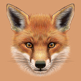 Illustrative Portrait of a Red Fox the Cute Fluffy Face of Forest Fox