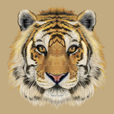 Illustrative Portrait of a Tiger Beautiful Face of Big Cat