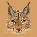Illustrative Portrait of Lynx Cute Wild Cat of Eurasia
