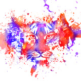 Tiger in Red and Blue