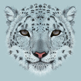 Illustrative Portrait of a Snow Leopard Irbis or Barys in Winter
