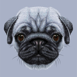 Illustrative Portrait of Pug Dog Cute Young Dog on Blue Background