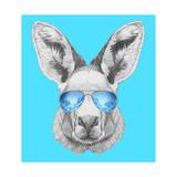 Portrait of Kangaroo with Mirror Sunglasses Hand Drawn Illustration