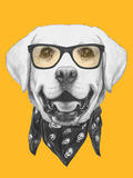 Portrait of Labrador with Glasses and Scarf Hand Drawn Illustration
