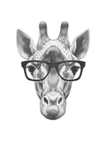 Portrait of Giraffe with Glasses Hand Drawn Illustration