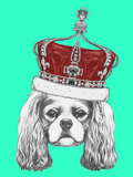 Portrait of Cavalier King Charles Spaniel with Crown Hand Drawn Illustration
