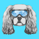 Portrait of Cavalier King Charles Spaniel with Ski Goggles Hand Drawn Illustration