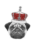 Original Drawing of Pug Dog with Crown Isolated on White Background
