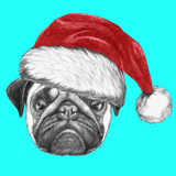 Portrait of Pug Dog with Santa Hat Hand Drawn Illustration