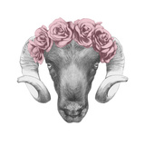 Original Drawing of Ram with Roses Isolated on White Background