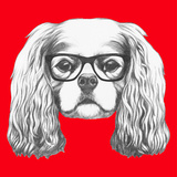 Portrait of Cavalier King Charles Spaniel with Glasses Hand Drawn Illustration