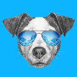 Portrait of Jack Russell Dog with Mirror Sunglasses Hand Drawn Illustration