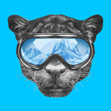 Portrait of Panther with Ski Goggles Hand Drawn Illustration