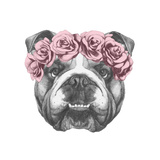 Original Drawing of English Bulldog with Floral Head Wreath Isolated on White Background