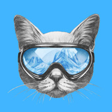 Portrait of Cat with Ski Goggles Hand Drawn Illustration