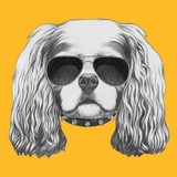 Portrait of Cavalier King Charles Spaniel with Sunglasses and Collar Hand Drawn Illustration