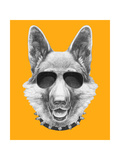 Portrait of German Shepherd with Sunglasses and Collar Hand Drawn Illustration