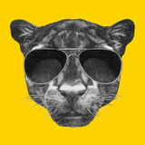 Portrait of Panther with Sunglasses and Collar Hand Drawn Illustration