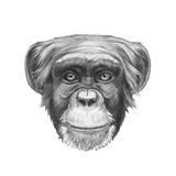 Original Drawing of Monkey Isolated on White Background