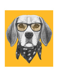 Portrait of Beagle Dog with Glasses and Scarf Hand Drawn Illustration