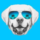 Portrait of Labrador with Mirror Sunglasses Hand Drawn Illustration