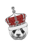 Original Drawing of Panda with Crown Isolated on White Background