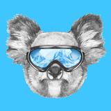 Portrait of Koala with Ski Goggles. Hand Drawn Illustration. Reproduction d'art par Victoria_novak