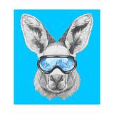 Portrait of Kangaroo with Ski Goggles Hand Drawn Illustration