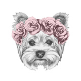 Portrait of Yorkshire Terrier Dog with Floral Head Wreath Hand Drawn Illustration