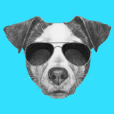 Original Drawing of Jack Russell with Sunglasses Isolated on Colored Background