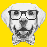 Portrait of Labrador with Glasses and Bow Tie Hand Drawn Illustration