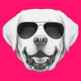 Portrait of Labrador with Sunglasses Hand Drawn Illustration