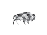 Geometric Grey Buffalo