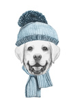Portrait of Labrador with Hat and Scarf Hand Drawn Illustration