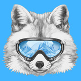 Portrait of Fox with Ski Goggles Hand Drawn Illustration