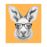 Portrait of Kangaroo with Glasses Hand Drawn Illustration
