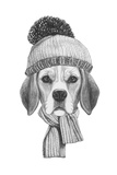 Portrait of Beagle Dog with Scarf and Hat Hand Drawn Illustration