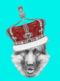 Portrait of German Shepherd with Crown Hand Drawn Illustration