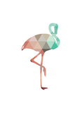 Mint Coral Flamingo