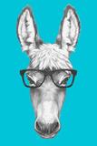 Portrait of Donkey with Glasses. Hand Drawn Illustration. Reproduction d'art par Victoria_novak