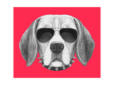 Portrait of Beagle Dog with Sunglasses and Collar Hand Drawn Illustration
