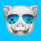 Portrait of Piggy with Mirror Sunglasses Hand Drawn Illustration