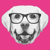 Portrait of Labrador with Glasses Hand Drawn Illustration