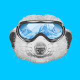 Portrait of Mongoose with Ski Goggles Hand Drawn Illustration