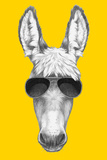 Portrait of Donkey with Sunglasses Hand Drawn Illustration