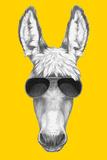 Portrait of Donkey with Sunglasses. Hand Drawn Illustration. Reproduction d'art par Victoria_novak